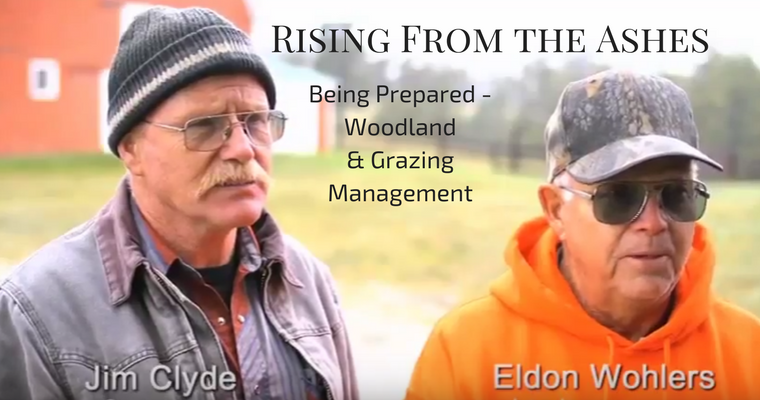 Being Prepared – Woodland & Grazing Management